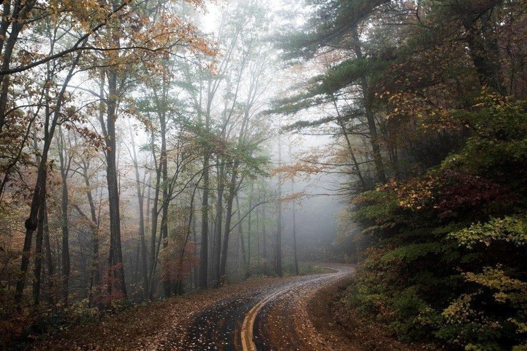 road-1030871_1920